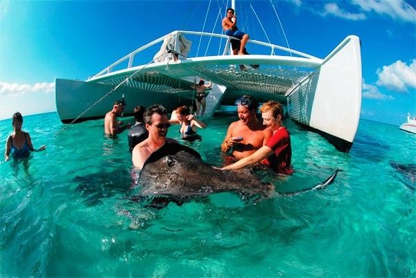 Stingray City Catamaran Sail And Snorkel